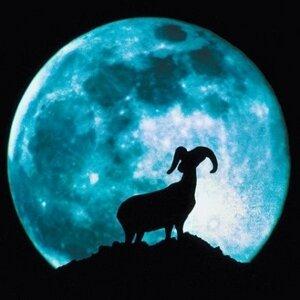 гороскоп для знака Зодиака  Козерог на апрель 2013 года