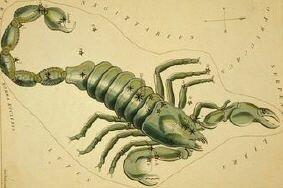 гороскоп для знака Зодиака Скорпион на сентябрь 2013 года